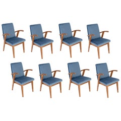 Set of Eight 20th Century Vintage Blue Chairs by Mieczyslaw Puchala, 1960s