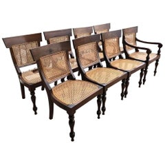 Set of Eight Anglo-Indian Rosewood Regency Dining Chairs