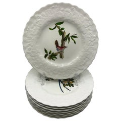 Set of Eight Audubon Bird Dinner Plates