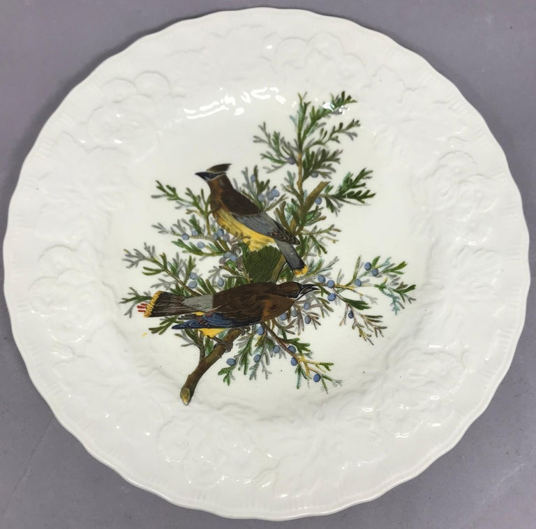 Set of eight Audubon birds of America plates in cream with raised floral border centering on eight different birds. Alfred Meakin, England, circa 1940.