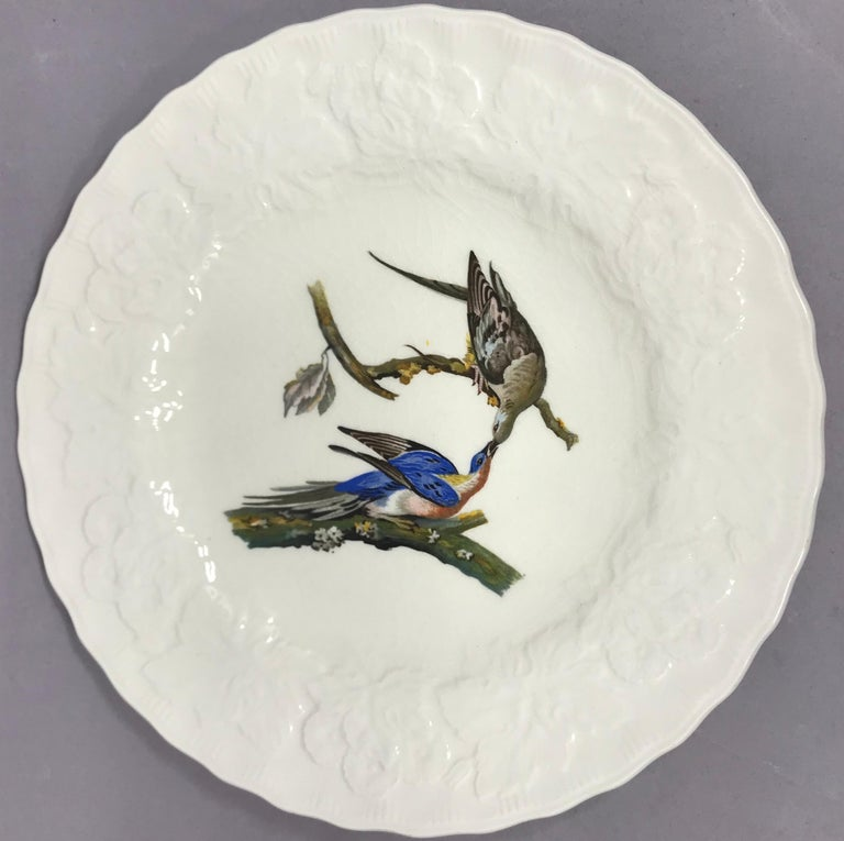 Set of Eight Audubon Bird Luncheon Plates 1