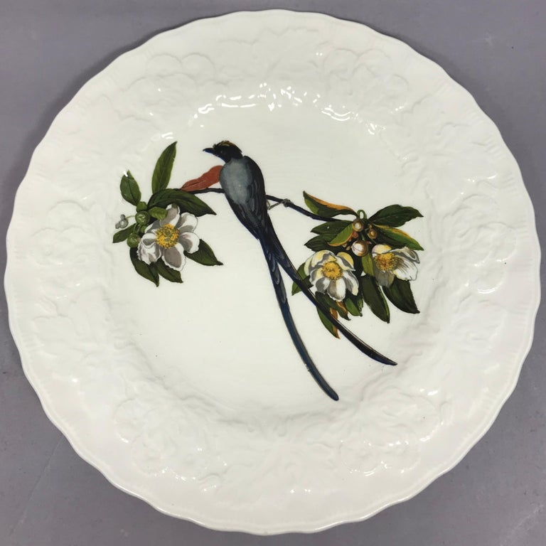 Set of Eight Audubon Bird Luncheon Plates 3