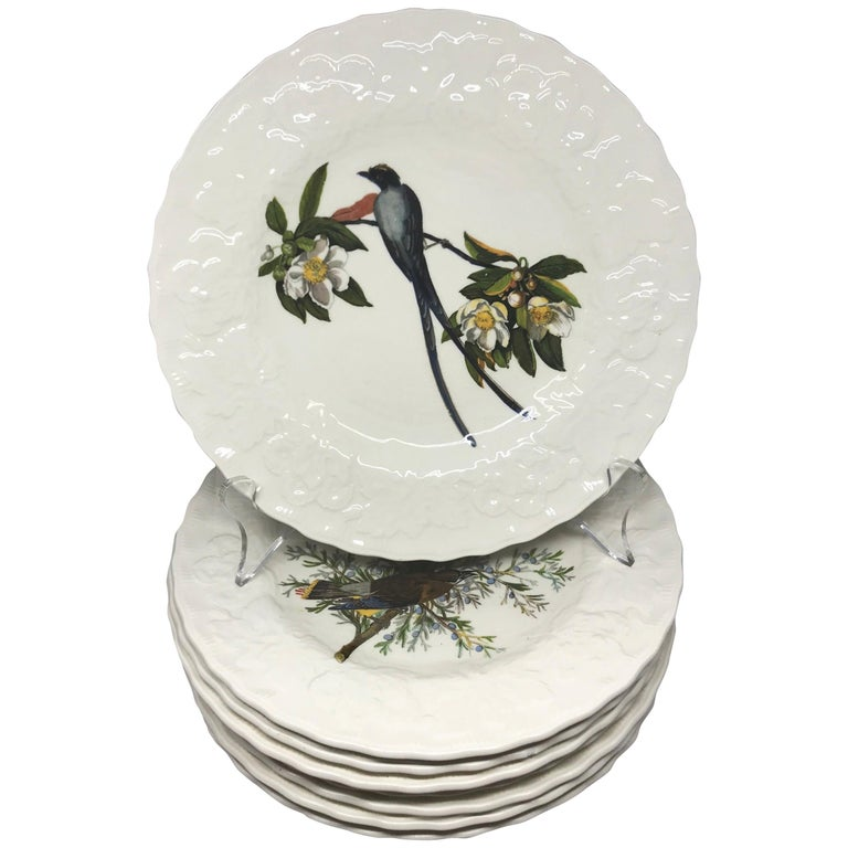 Set of Eight Audubon Bird Luncheon Plates