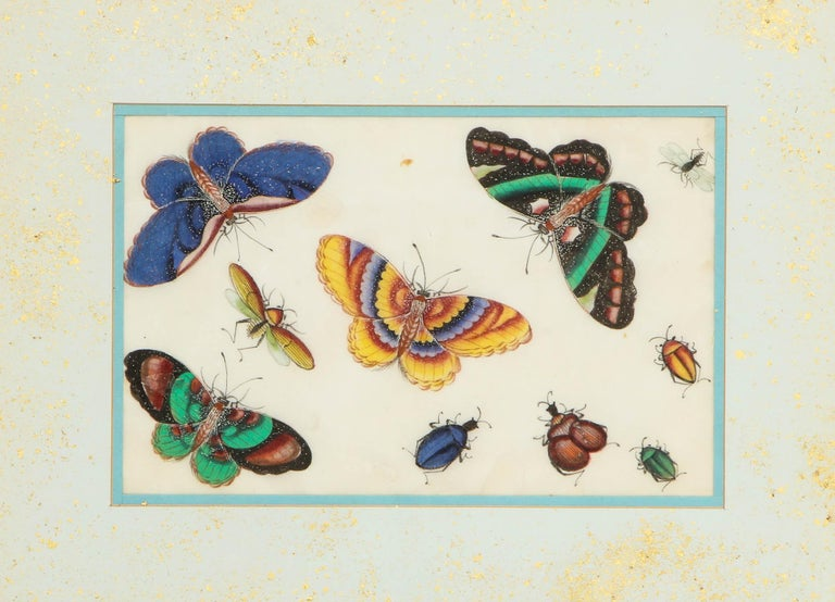 Set of Eight Chinese Rice Paper Paintings of Butterflies and Insects For Sale 6