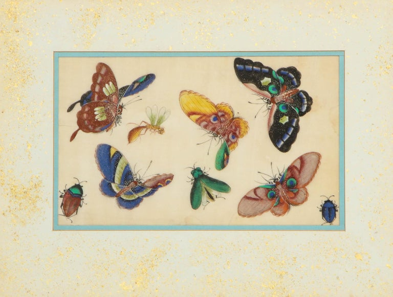 Set of Eight Chinese Rice Paper Paintings of Butterflies and Insects For Sale 8