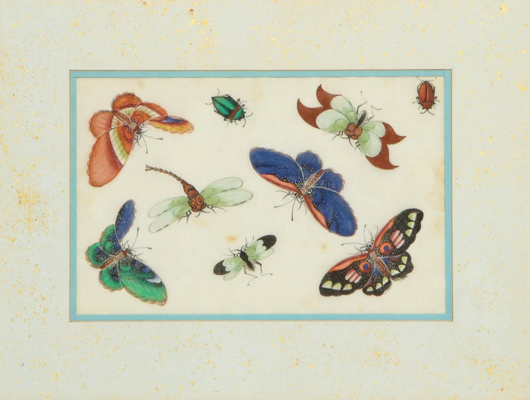 Set of Eight Chinese Rice Paper Paintings of Butterflies and Insects For Sale 10