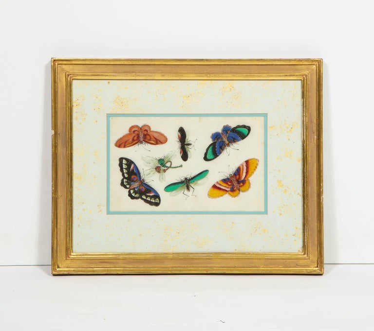 Set of Eight Chinese Rice Paper Paintings of Butterflies and Insects For Sale 11