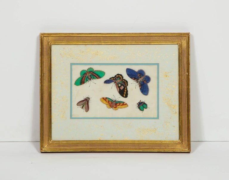 A set of eight Chinese rice paper paintings of butterflies and insects,