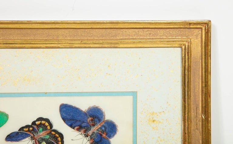 Set of Eight Chinese Rice Paper Paintings of Butterflies and Insects In Good Condition For Sale In New York, NY