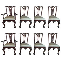 Set of Eight Chippendale Chairs, Six Side and Two Arm Chairs, 20th Century