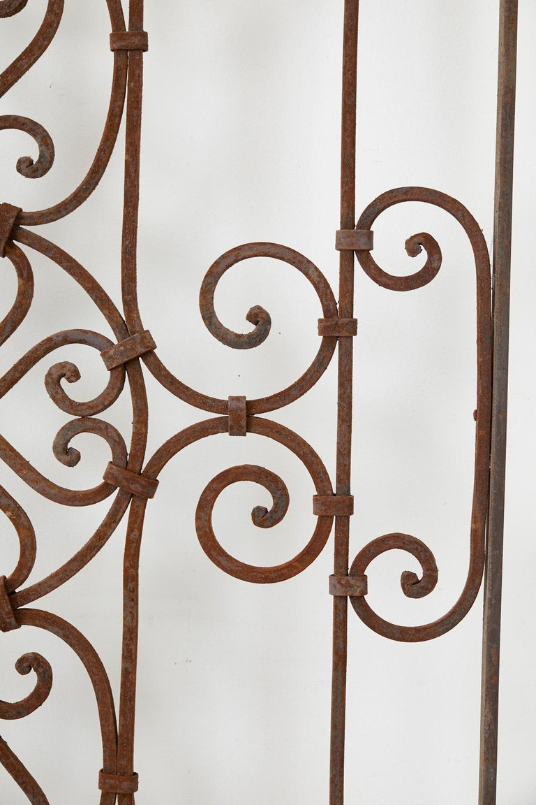 Set of Eight Spanish Wrought Iron Doors or Gates For Sale 9
