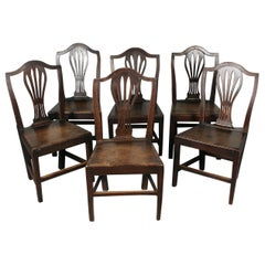 Set of English Country Chairs