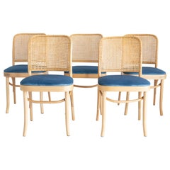 Set of Five Blue Velvet Thonet Wood Rattan Chairs, 1960s