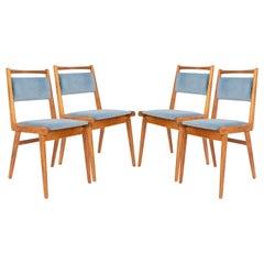 Set of Four 20th Century Blue Velvet Chairs, Poland, 1960s