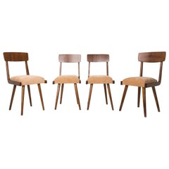 Set of Four 20th Century Gazelle Beige Wood Chairs, 1960s