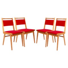 Set of Four 20th Century Red Velvet Chairs, by Rajmund Halas, Poland, 1960s
