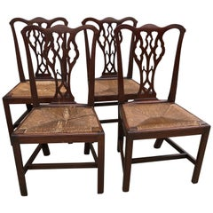 Set of Four American Chippendale Walnut Side Chairs, Slip Rush Seats, circa 1770