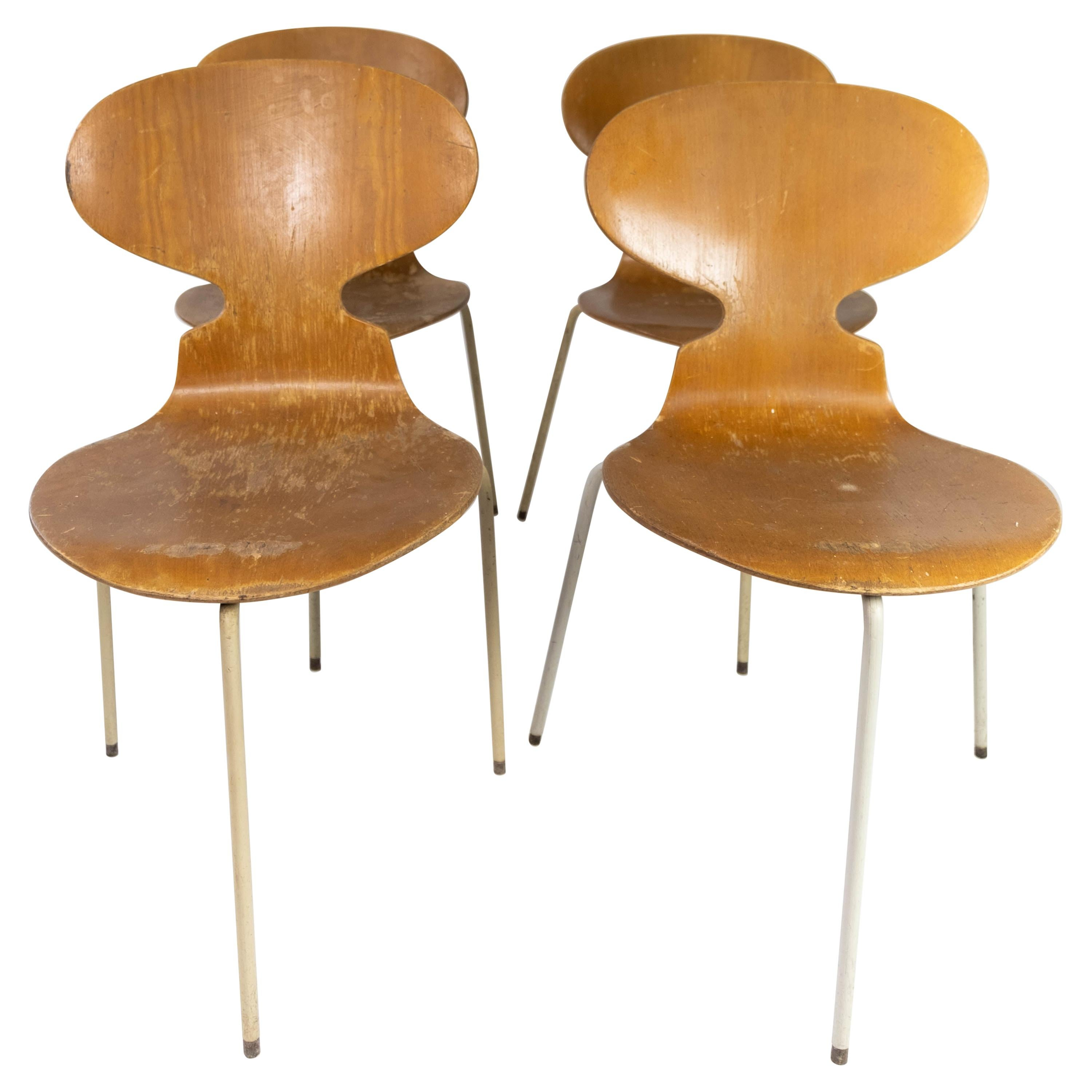 Set of Four Ant Chairs, Model 3101, in Light Wood, by Arne Jacobsen, 1950s