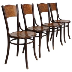 Set of Four Art Nouveau Bentwood Chairs by Thonet Mundus