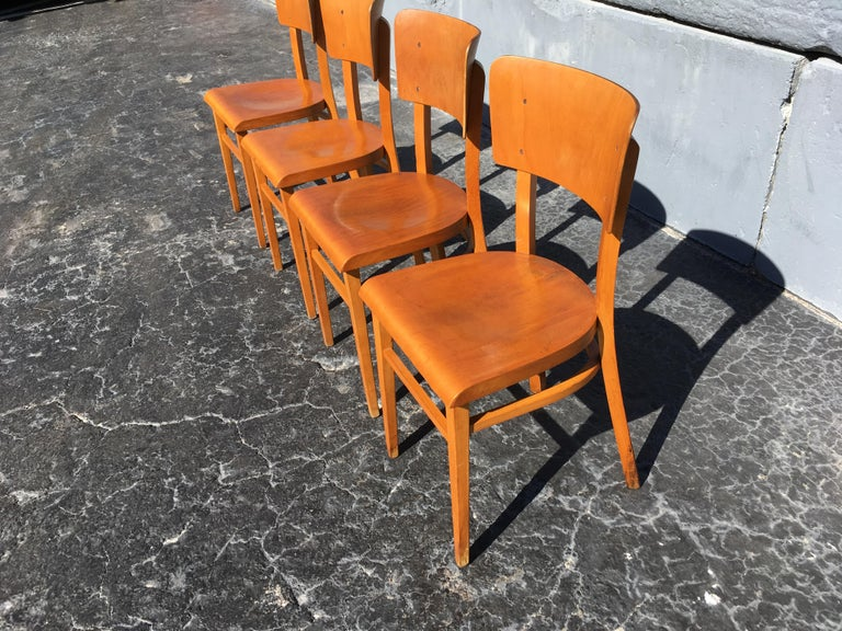 Set of Four Beautiful Bentwood Kitchen Dining Chairs, 1950s 3