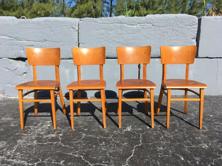 Set of Four Beautiful Bentwood Kitchen Dining Chairs, 1950s 4