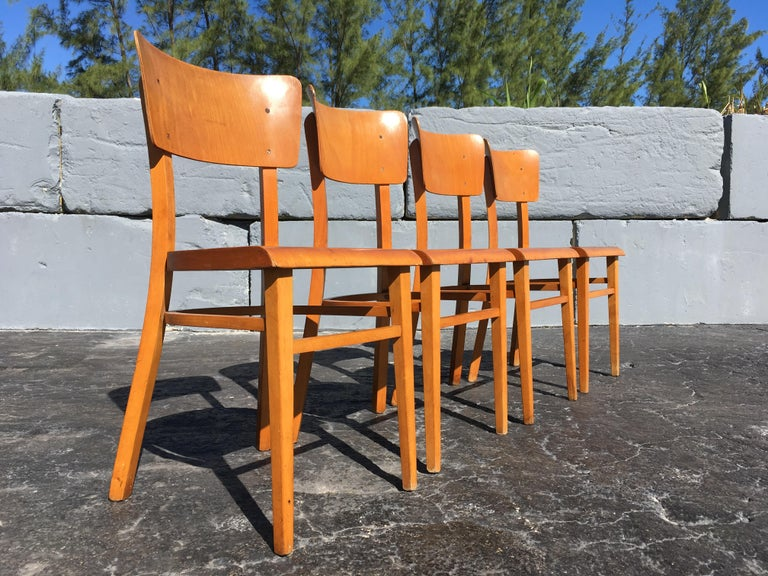 Mid-Century Modern Set of Four Beautiful Bentwood Kitchen Dining Chairs, 1950s