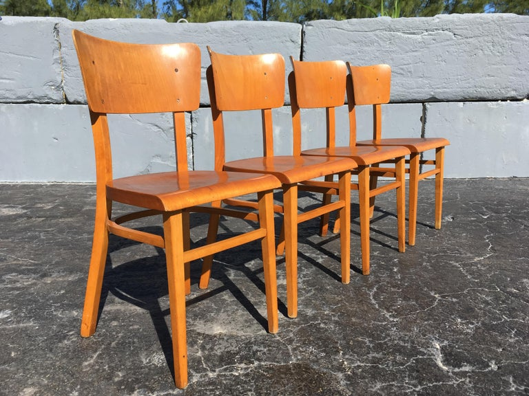Czech Set of Four Beautiful Bentwood Kitchen Dining Chairs, 1950s