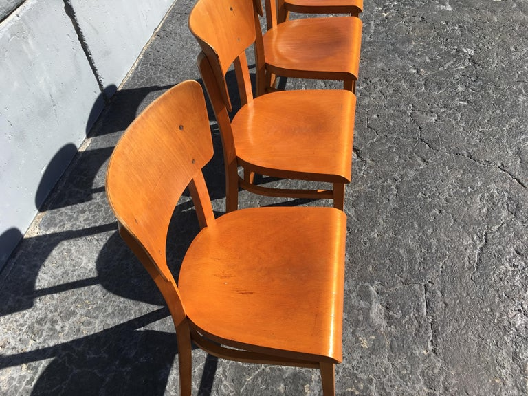 Set of Four Beautiful Bentwood Kitchen Dining Chairs, 1950s 1