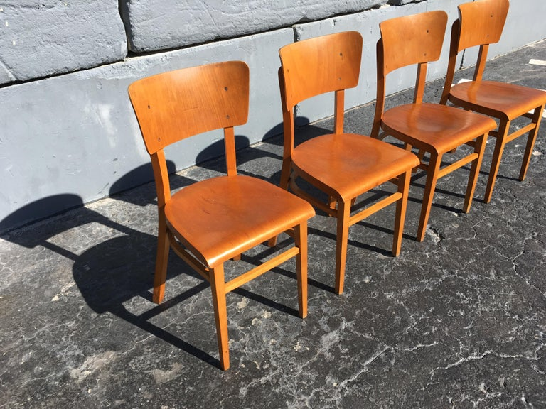 Set of Four Beautiful Bentwood Kitchen Dining Chairs, 1950s 2