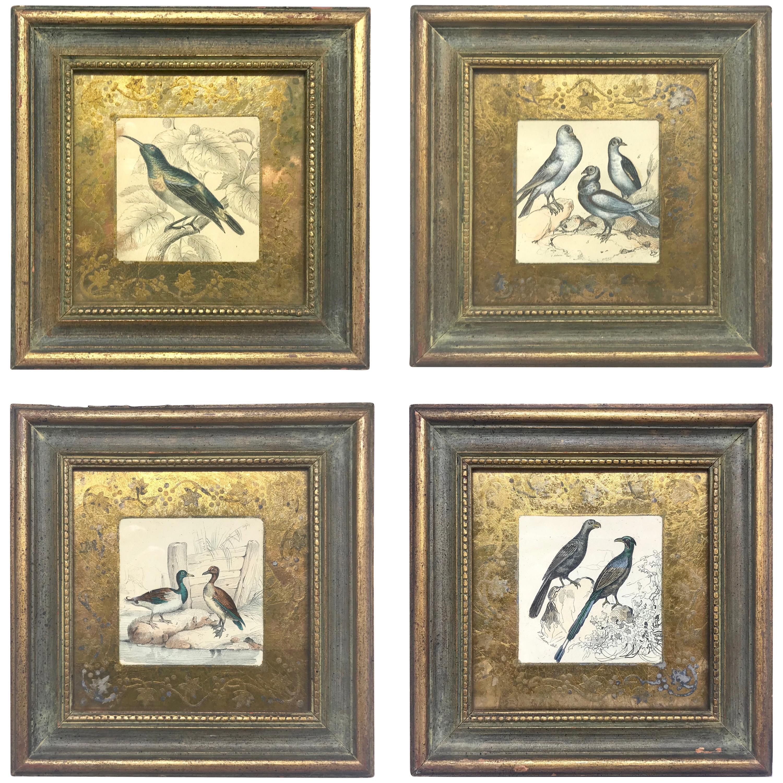 Set of Four Bird Engravings