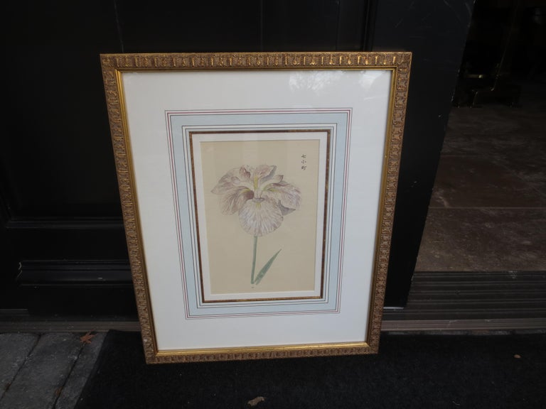 Set of Four Chinese Watercolor Flowers with Numbered Plates on English Mats In Good Condition For Sale In Atlanta, GA