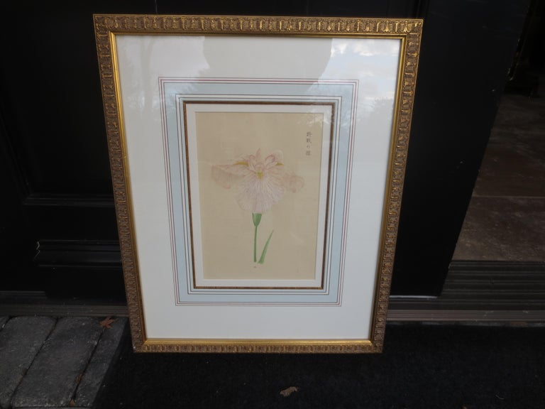 19th Century Set of Four Chinese Watercolor Flowers with Numbered Plates on English Mats For Sale