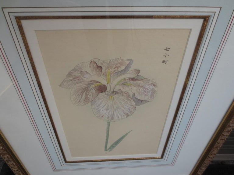 Set of Four Chinese Watercolor Flowers with Numbered Plates on English Mats For Sale 2