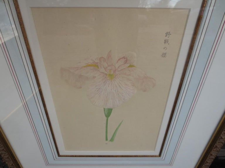Set of Four Chinese Watercolor Flowers with Numbered Plates on English Mats For Sale 3
