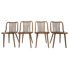 Set of Four Design Antonin Suman Dining Chairs, Czechoslovakia, 1960s