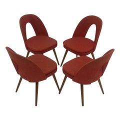 Set of Four Design Dining Chairs Designed by Antonín Šuman, 1960s