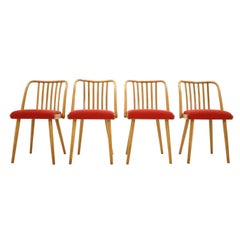 Set of Four Dining Chairs or Antonín Šuman, 1960s