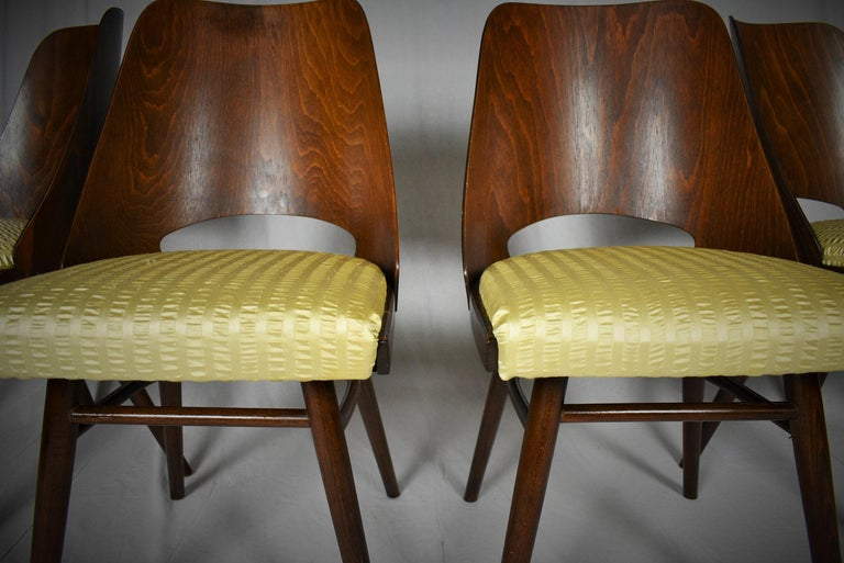 Set of Four Dining Chairs, Ton, Designed by Oswald Haerdtl, 1950s, Expo 58 For Sale 3