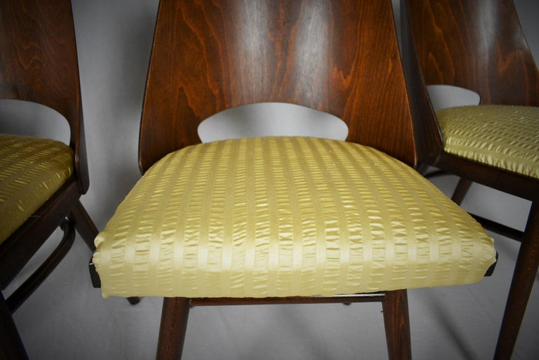 Set of Four Dining Chairs, Ton, Designed by Oswald Haerdtl, 1950s, Expo 58 For Sale 5