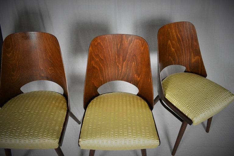 Set of Four Dining Chairs, Ton, Designed by Oswald Haerdtl, 1950s, Expo 58 For Sale 6