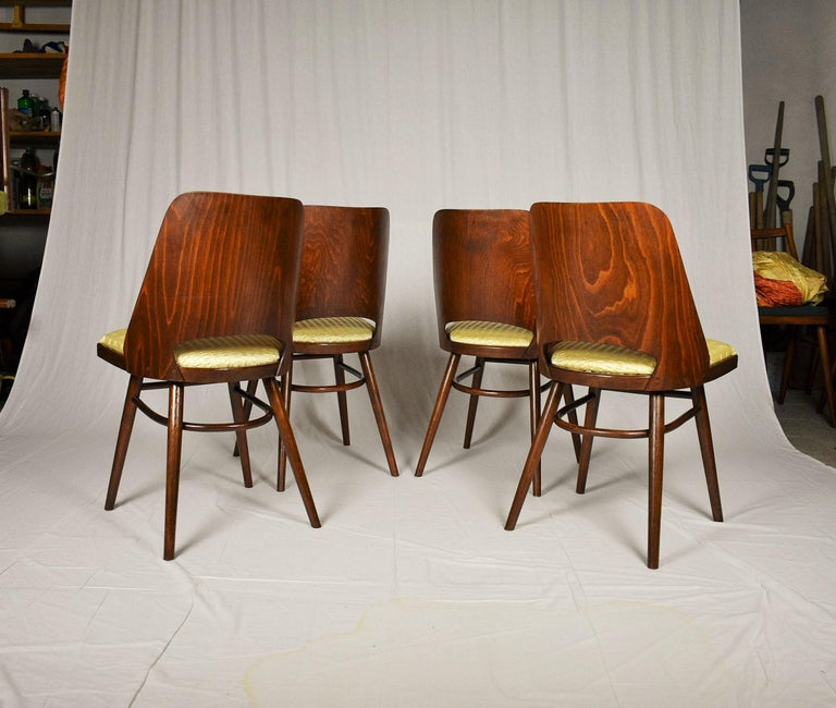 Set of Four Dining Chairs, Ton, Designed by Oswald Haerdtl, 1950s, Expo 58 For Sale 7