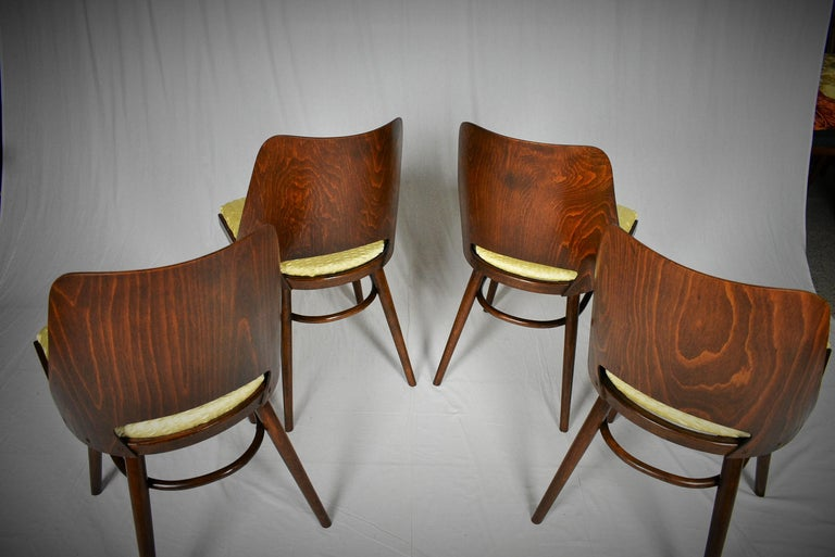 Set of Four Dining Chairs, Ton, Designed by Oswald Haerdtl, 1950s, Expo 58 For Sale 8