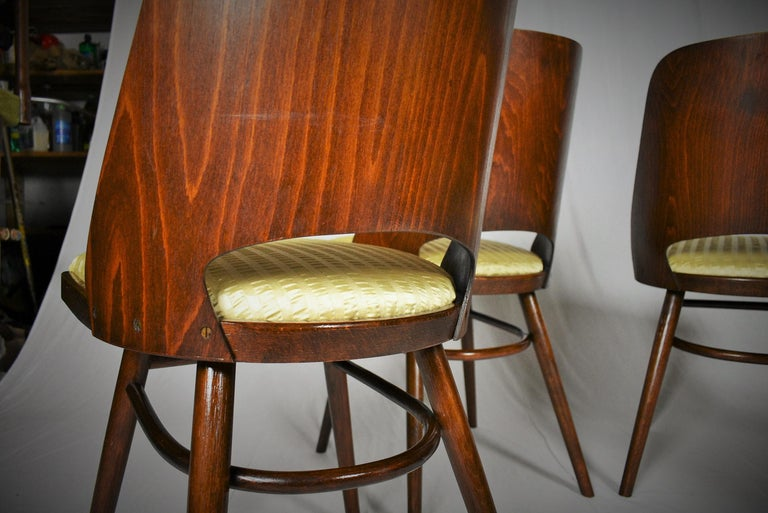 Set of Four Dining Chairs, Ton, Designed by Oswald Haerdtl, 1950s, Expo 58 For Sale 9