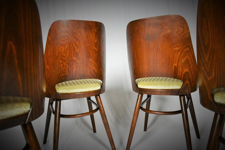 Set of Four Dining Chairs, Ton, Designed by Oswald Haerdtl, 1950s, Expo 58 For Sale 10