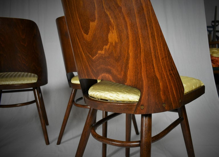 Set of Four Dining Chairs, Ton, Designed by Oswald Haerdtl, 1950s, Expo 58 For Sale 11