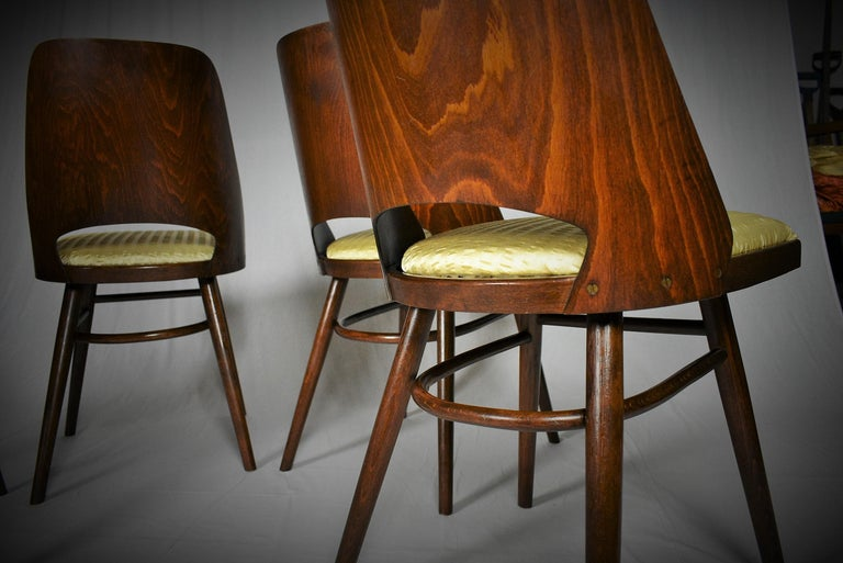 Set of Four Dining Chairs, Ton, Designed by Oswald Haerdtl, 1950s, Expo 58 For Sale 12
