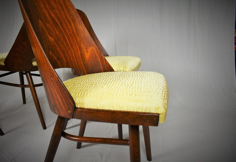 Czech Set of Four Dining Chairs, Ton, Designed by Oswald Haerdtl, 1950s, Expo 58 For Sale
