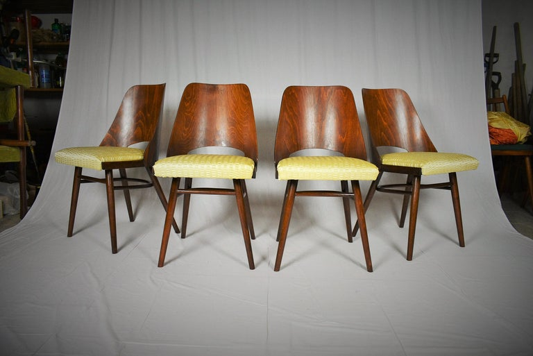 Mid-20th Century Set of Four Dining Chairs, Ton, Designed by Oswald Haerdtl, 1950s, Expo 58 For Sale