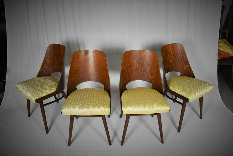 Set of Four Dining Chairs, Ton, Designed by Oswald Haerdtl, 1950s, Expo 58 For Sale 2