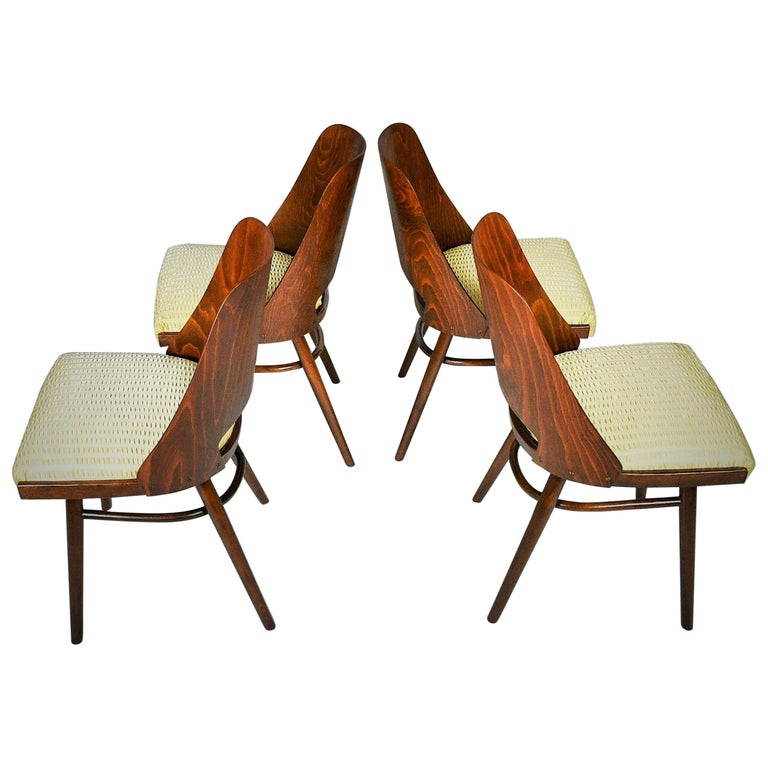 Set of Four Dining Chairs, Ton, Designed by Oswald Haerdtl, 1950s, Expo 58 For Sale